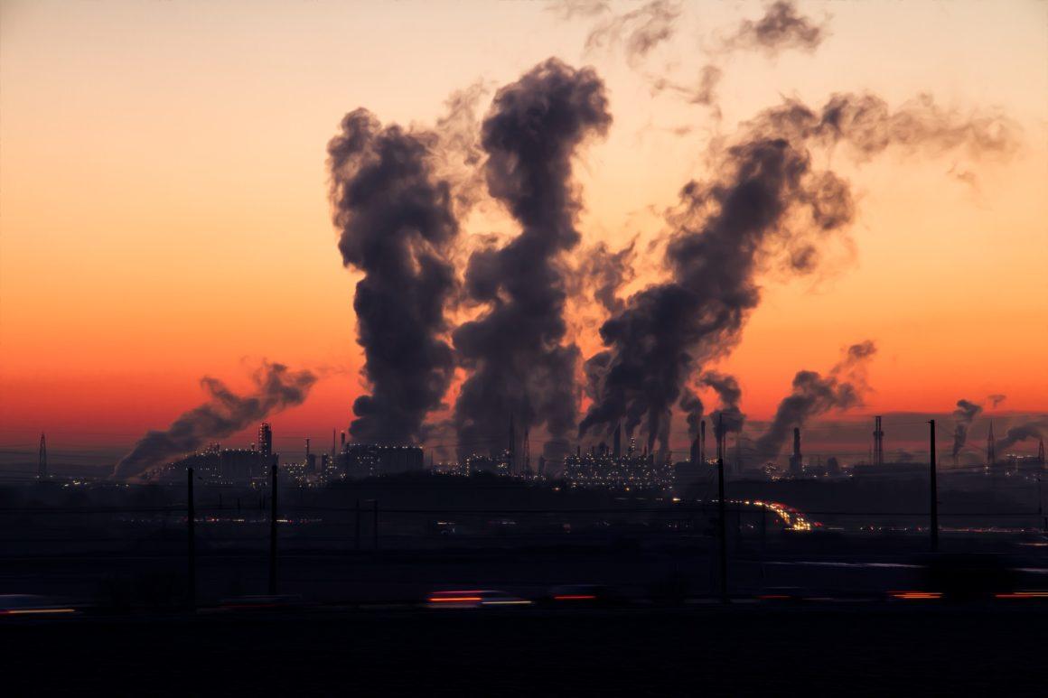 La responsabilità dell'impresa cessionaria d'azienda rispetto all'adozione di misure di riparazione in materia ambientale.