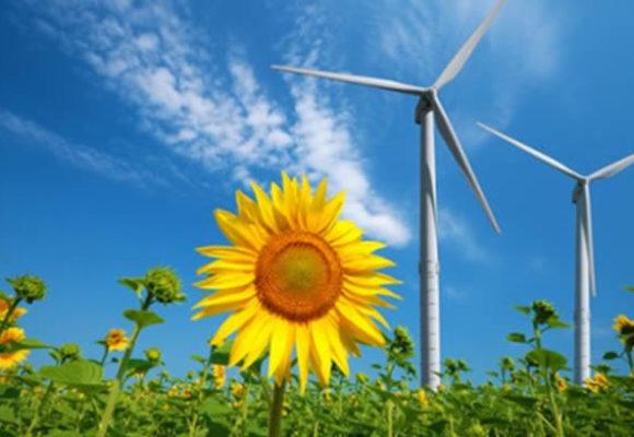 Impianti eolici e aree contermini