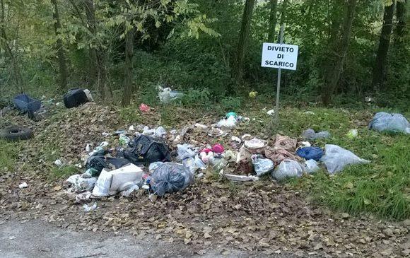 Ordinanza di rimozione di rifiuti abbandonati e garanzie procedimentali