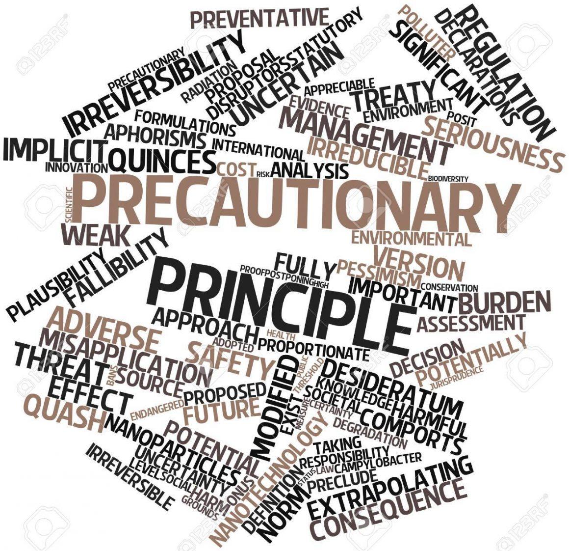 L'ascesa del principio di precauzione nel diritto ambientale contemporaneo