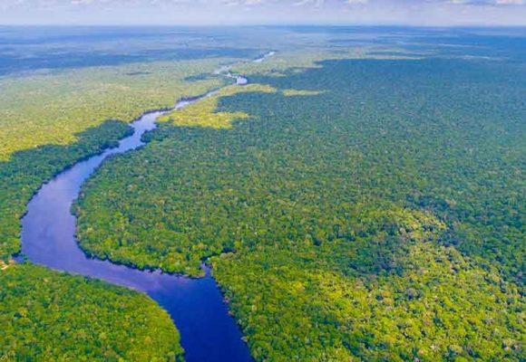 A chi appartiene l'Amazzonia?