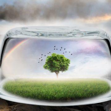 Valutazione d'impatto ambientale: i progetti devono essere adeguatamente compiuti e definiti