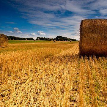 Localizzazione di impianti di trattamento e recupero dei rifiuti in zona a destinazione agricola