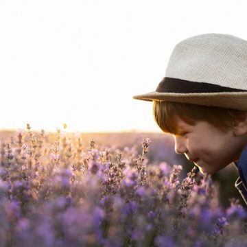 Molestie olfattive e tollerabilità delle emissioni