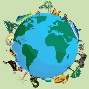 La strategia sulla biodiversità dell'Unione europea