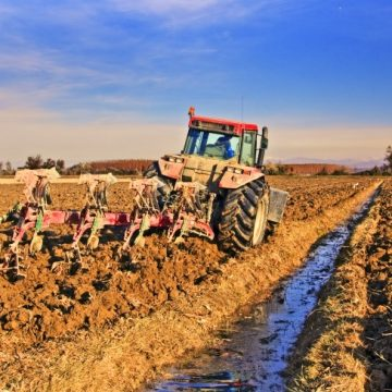 Fanghi e agricoltura