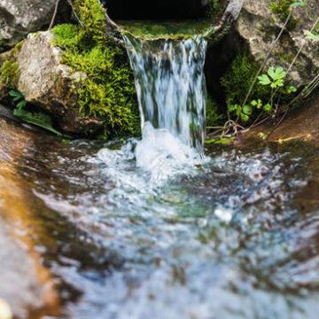 Il mancato pagamento del canone previsto dall'autorizzazione allo scarico di acque reflue industriali legittima la revoca dell'autorizzazione