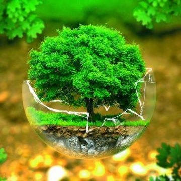 Bonificare oggi i siti contaminati di ieri
