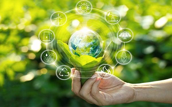 Compiti e prerogative del SUAP nell'ambito del procedimento volto al rilascio dell'Autorizzazione Unica Ambientale