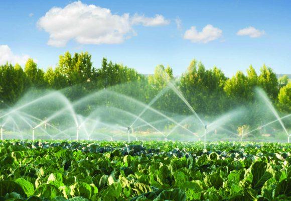 Regolamento (UE) 2020/741 recante prescrizioni minime per il riutilizzo dell'acqua a fini irrigui in agricoltura.